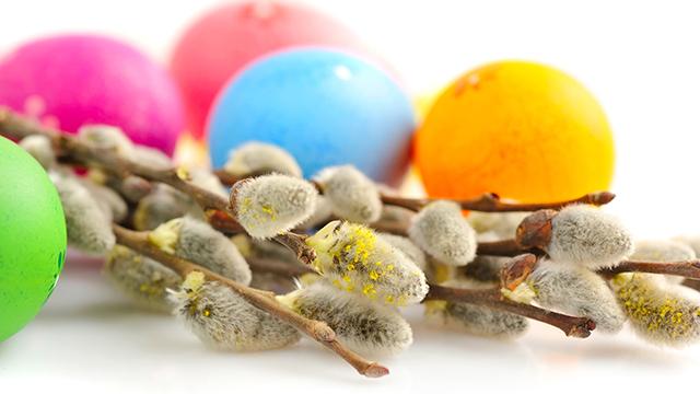 gekleurde eitjes